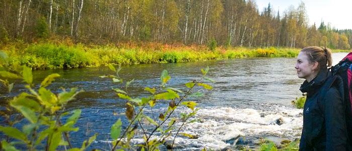 Suomen luonto on kauneimmillaan kesäisin